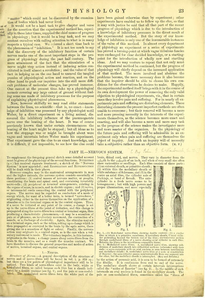 matter which could not be discovered by the examina- tion of bodies which liad never lived, ue of It would not be a hard task to give chapter and verse eri- for the assertion that the experimental method has, especi- ^^'^\ ally in these later times, supplied the chief means of progress ' in physiology ; but it would be a long task, and we may content ourselves with calling attention to what is in many respects a ty^iical case. We referred a short time back to the phenomena of  inhibition. It is not too much to say that the discovery of the inhibitory function of certain nerves marks one of the most important steps in the pro- gress of physiology during the past half-century. The mere attainment of the fact that the stimulation of a nerve might stop action instead of inducing action con- stituted in itself almost a revolution ; and the value of that fact in helping us on the one hand to unravel the tangled jjuzzles of physiological action and reaction, and on the other hand to push our inquiries into the still more diffi- cult problems of molecular changes, has proved immense. One cannot at the present time. take up a physiological memoir covering any large extent of ground without find- ing some use made of inhibitory processes for the purpose of explaining physiological phenomena. Now, however skilfully we may read older statements between the lines, no scientific—that is, no exact—know- ledge of inhibition was possessed by any physiologist until Weber, by a direct experiment on a living animal, dis- covered the inhibitory influence of the pneumogastric nerve over the beating of the heart. It was of course previously known that under certain circumstances the beating of the heart might be stopped; but all ideas as to how the stoppage was or might be brought about were vague and uncertain before Weber made his experiment. That experiment gave the clue to an exact knowledge, and it is difficult, if not impossible, to see how the clue could PART II.—NERVOUS SYSTEM. To