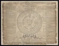 view Tabula nosologiae et historiae morborum / J.R. Nicholls.