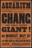 view Royal Aquarium : Notice: the manager has the pleasure to announce that he has concluded arrangements with Chang, the great Chinese giant.