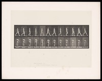 view A naked man walking. Collotype after Eadweard Muybridge, 1887.