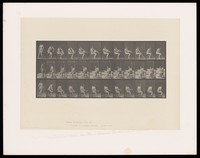 view A semi-naked woman sits on a chair and puts on a stocking. Collotype after Eadweard Muybridge, 1887.