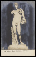 view Antinous. Photographic postcard, 191-.