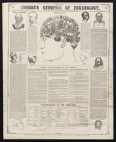 view Coombe's synopsis of phrenology : for the use of practical phrenologists.