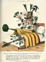 view A man in bed with vegetables sprouting from all parts of his body; as a result of taking an overdose of James Morison's vegetable pills. Coloured lithograph by C.J. Grant, 1831.