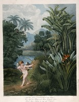view Cupid inspiring plants with Love, in a tropical landscape. Coloured stipple engraving by T.Burke, ca. 1805, after P. Reinagle.