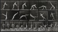 view A man performing a forward flip. Collotype after Eadweard Muybridge, 1887.
