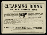 view Cleansing drink for newly-calved cows / T. Bentley.
