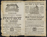 view Dry feet and easy shoes... : Jones's celebrated waterproof composition... : Jones's Gloucestershire Specific for foot-rot in sheep : a disinfectant : the most speedy and certain cure, without injury to the foot