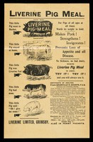 view Liverine pig meal : for pigs of all ages at all times : worth its weight in gold... / Liverine Limited.