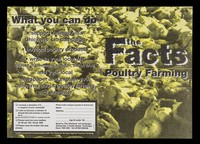 view The facts : poultry farming