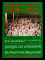 view Turkey meat production...  the hidden price of suffering...