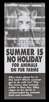 view Summer is no holiday for animals on fur farms