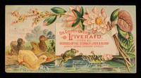 view Dr. Grosvenor's Liveraid : cures all diseases of the stomach, liver & blood : small doses, prompt effect.