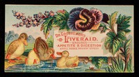 view Dr. Grosvenor's Liveraid : ensures appetite & digestion : small doses, prompt effect.