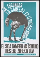 view An ostrich sticks its head in a hole in the ground with the message in Basque, 'Don't hide your head' representing an advertisement for the Anti-AIDS Committee of Álava, Hies Kontrako Komite Hiritarra Comision Ciudadana Anti-SIDA. Colour lithograph, 199-.