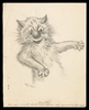 Poems, notes, drawings (including 2 drawings of cats by Louis Wain)