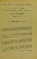 view Hermes zoster bilaterale nei territori del primo e secondo ramo del nervo trigemino : studio clinico / E. Passera.