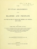 view On the muscular arrangements of the bladder and prostate, and the manner in which the ureters and urethra are closed
