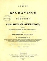 view A series of engravings representing the bones of the human skeleton : with the skeletons of some of the lower animals and explanatory references / by John Barclay ; plates engraved by Edward Mitchell.