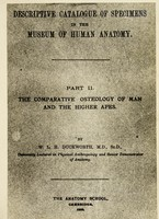 view Descriptive catalogue of specimens in the museum of human anatomy. Pt. 2, The comparative osteology of man and the higher apes