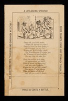 """view Dr. Worthington's """"Cholera and Diarrhoea Medicine"""" : the great animal puzzle."""