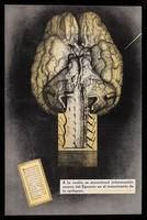 view A la vuelta se encontrará información acerca del Epamin en el tratamiento de la epilepsia ... / Parke, Davis & Compañía.