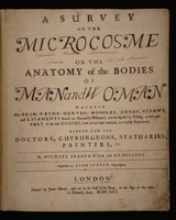 view A survey of the microcosme, or the anatomy of the bodies of man and woman : wherein the skin, veins, nerves, muscles, bones, sinews, and ligaments thereof are accurately delineated, and so disposed by pasting, as that each part of the said bodies, both inward and outward, are exactly represented. Useful for all doctors, chyrurgeons, statuaries, painters, &c.